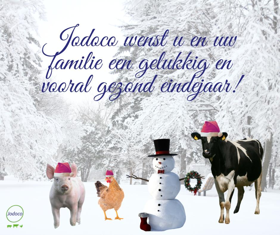 Jodoco wenst u en uw familie een gelukkig en gezond eindejaar!
